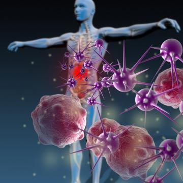 Un large panel de substances naturelles associées, à action synergique pour optimiser le fonctionnement du système immunitaire