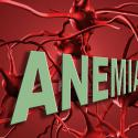 Anémie et nutrition