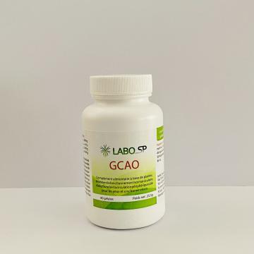 Traitement naturel du Glaucome à angle ouvert - GCAO - Labosp.com